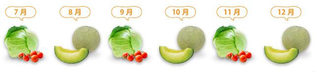 コース:野菜/果物併用コース・プラン:両親に直接プラン・頻度:毎月